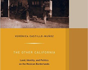bookcover of Verónica Castillo-Muñoz's The Other Califronia Land, Identity, and Politics on the Mexican Borderlands