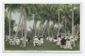 6.3 Afternooon Tea Palm Beach illustration - potentially a hand colored photograph